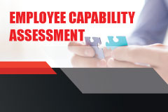 Employee Capability Assessment